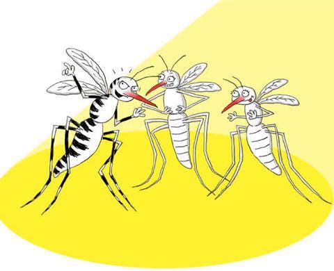 Zanzare e altri insetti: Impara a difenderti
